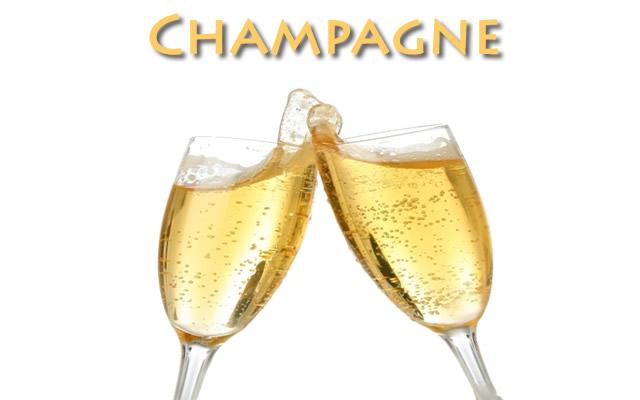 Champagne Labrador