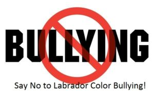 """Labrador Color Breed Bullying"" defined"