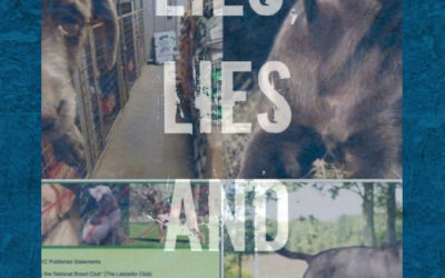 Lies Lies Lies — Please Stop Lying